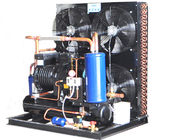 CA-0500 Air Cooled Condensing Unit Compact Structure Stable Operation Low Vibration